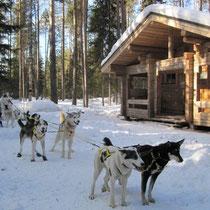 Rast-Hütte im Oulanka-Nationalpark