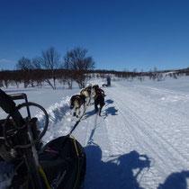 """Nachmittagsfahrt auf dem """"Panorama-Trail""""..."""