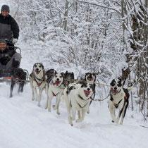 Alle haben Spass daran, dass wir endlich auf Schnee trainieren können.