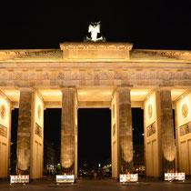Brandenburger Tor 2013 N°2