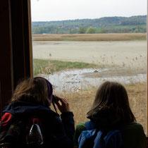 Junge Vogelliebhaber beim Blick in die Flachwasserzone - Foto: NABU/M. Fiebrich
