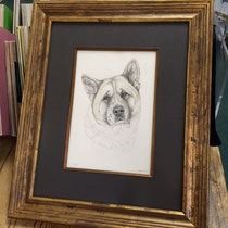 Ziggy framed
