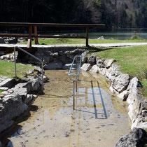 Wassertreten in 87629 Alatsee im Faulenbach Tal -nähe Füssen (Ostallgäu)