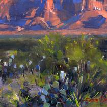 Desert Floor Sunset