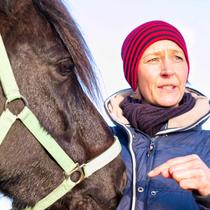 """Workshop """"Verspannungen am Pferd selber lösen"""" - theoretisch und praktisch"""