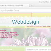 Projekte Webdesign