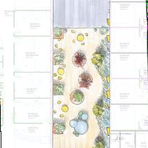 Plan masse du patio dédié aux patients et à leurs familles