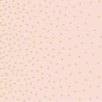 confetti border blush