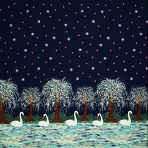 swan lake doppelborte