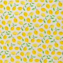 Zitrone auf weiss