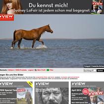Stern View - Das Bild von Fine gehörte im April zu den Topbildern des Tages :)