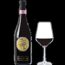 "GATTINARA D.O.C.G. ""GALIZJA"" 2009"