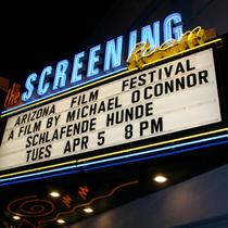 """Schlafende Hunde"" (Sleeping Dogs) at the Arizona International Film Festival."