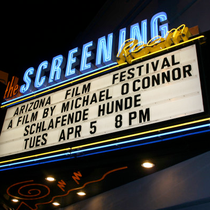 """Schlafende Hunde"" (Sleeping Dogs) at the Arizona International Film Festival."