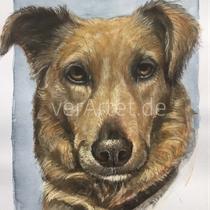 Auftragsmaler / Hundeportrait / Aquarell / Geschenk / Tier malen lassen / Haustier /