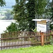 Weissenkirchen | Wachau | Hier gibt's die allerbesten Marillen-Knödel weit und breit!