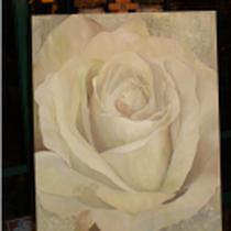 Original: Country-LebensArt, BriSch, Weiße Rose im Kunstlicht