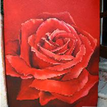 Original: Country-LebensArt, BriSch, Rote Rose, Acrylbild 80x100cm, vergeben
