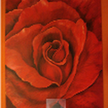 Original: Country-LebensArt, BriSch, Rose für Krissi, Auftragsbild Acryl 80x100cm, vergeben