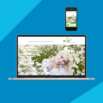 SNS Nano / Screendesign