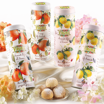 SOFT AMARETTI ASSORTED FRUITS IN TIN