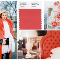 Design Shuffle .com Cayenne Rot von Pantone online