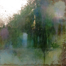 Forest Dawn 16 (15x15x5cm) SOLD