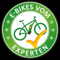 Elektrofahrrad vom Experten im e-Bike Shop in Aarau-Ost