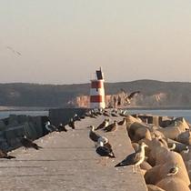 Lighthouse near Sagres