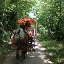 balade en calèche en Ardèche
