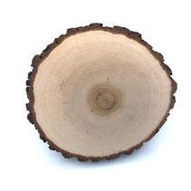 das Atelier-weiden Baumscheiben