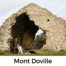 Mont Doville, Urlaub mit Hund, Normandie, Cotentin