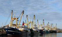 """<img src=""""image.jpg"""" alt= """"Haven van Oudeschild op Texel met vissersschepen"""">"""