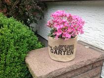 Garten Gerda Althaus