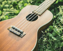 ギター・ウクレレ