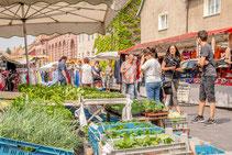 12.05.2018 Wippertusmarkt