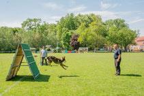 28.05.2017 Hundesport