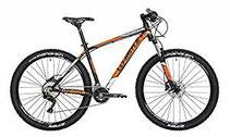 Whistle  beste gute Mountainbikes MTB kaufen billig guenstig test tipps erfahrungen meinungen vergleich online bestellen sparen beste gute schnaeppchen