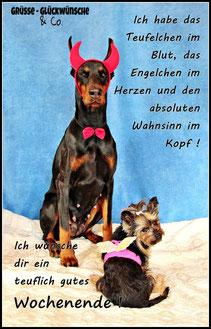 Wochenende Gruesse Glueckwuensche Und Cos Webseite