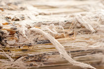 Control del Asbesto