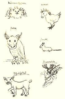 Mähnenwolfspinne, Entesel, Kuhu, Aratte, Pferdferkel, Hummelch
