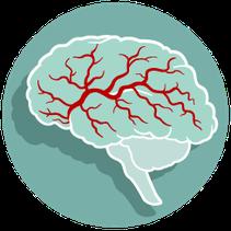 bloedstroom hersenen