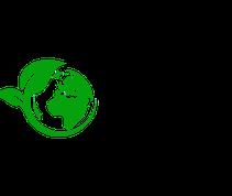 ecoboard nachhaltiges Surfbrett Surfboard sustainable recycling öko handgemacht surfen konstruktion öko harz epoxy resin bio based