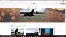 Gestalte Deine eigene Jimdo Homepage