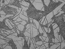 炭素鋼の窒化組織