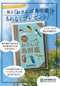 『おさんぽ鳥図鑑』応募用ハガキ