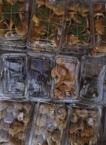 日本料理「美菜ガルテンふるかわ」きのこの日本料理「美菜ガルテンふるかわ」きのこ上