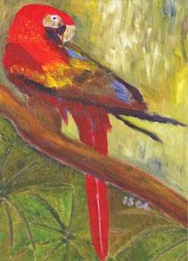 Grußkarte Papagei