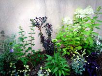 花壇の1つ