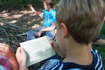 Schatzsuche im Wald